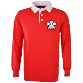 Camiseta Gales 1905